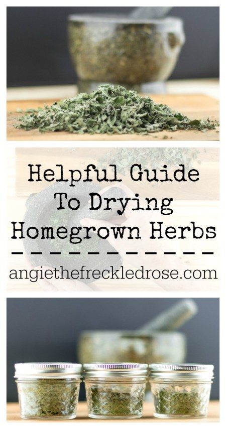 Helpful Guide To Drying Homegrown Herbs | angiethefreckledrose.com