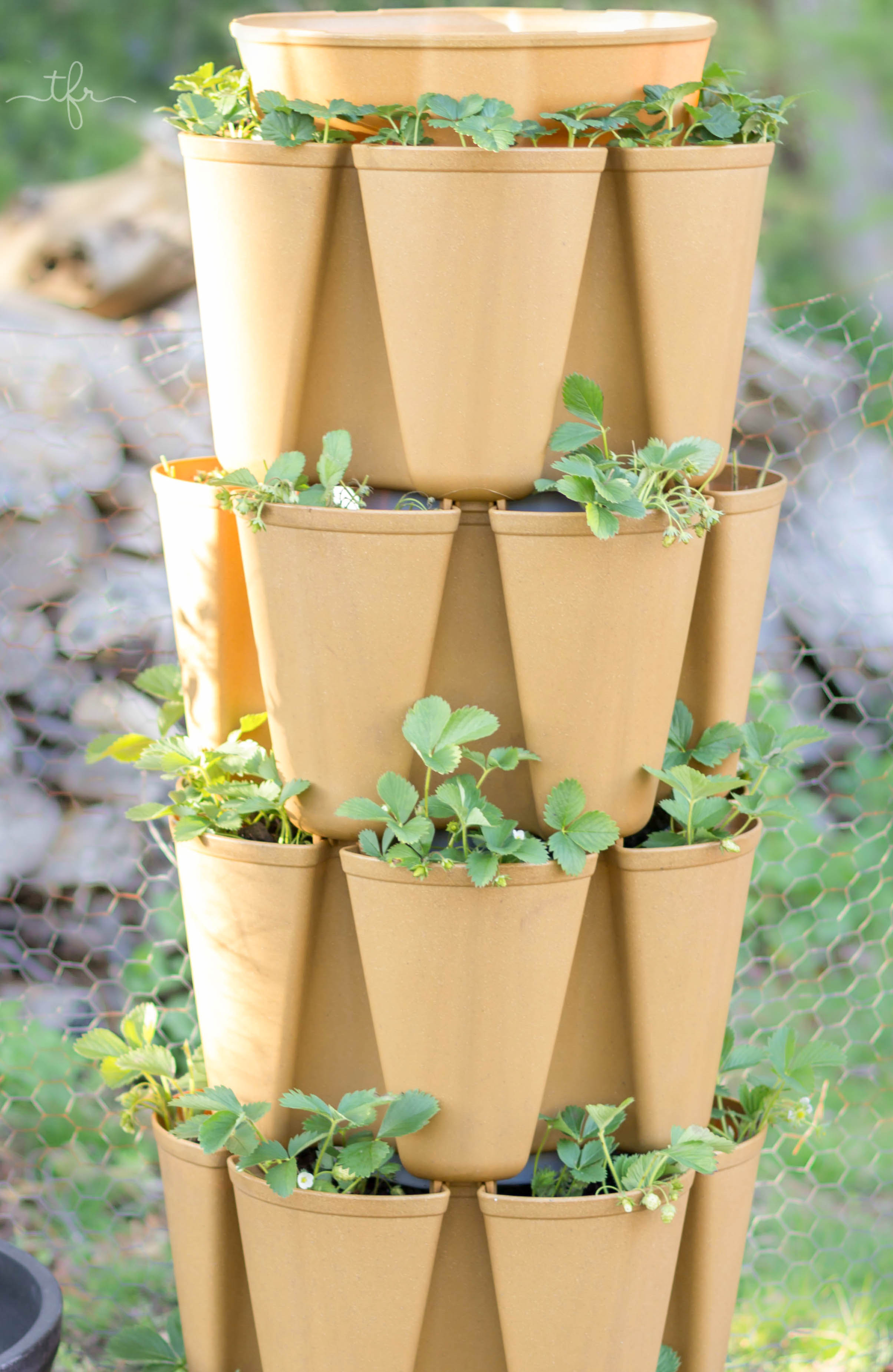 Grow A Vertical Garden In This Stackable, Space Saving Plant Tour That Fits  Into