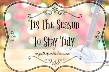 'Tis The Season To Stay Tidy