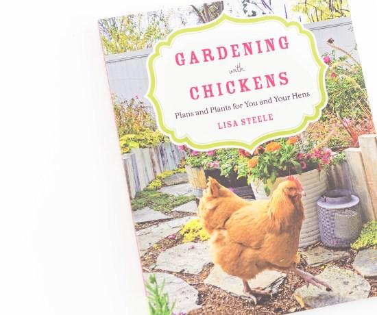 Gardening With Chickens | angiethefreckledrose.com