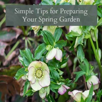 Simple Tips for Preparing Your Spring Garden