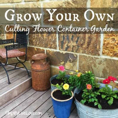 Grow Your Own Cutting Flower Container Garden - SimplifyLiveLove -