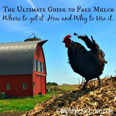 The Ultimate Guide to Free Mulch - SimplifyLiveLove