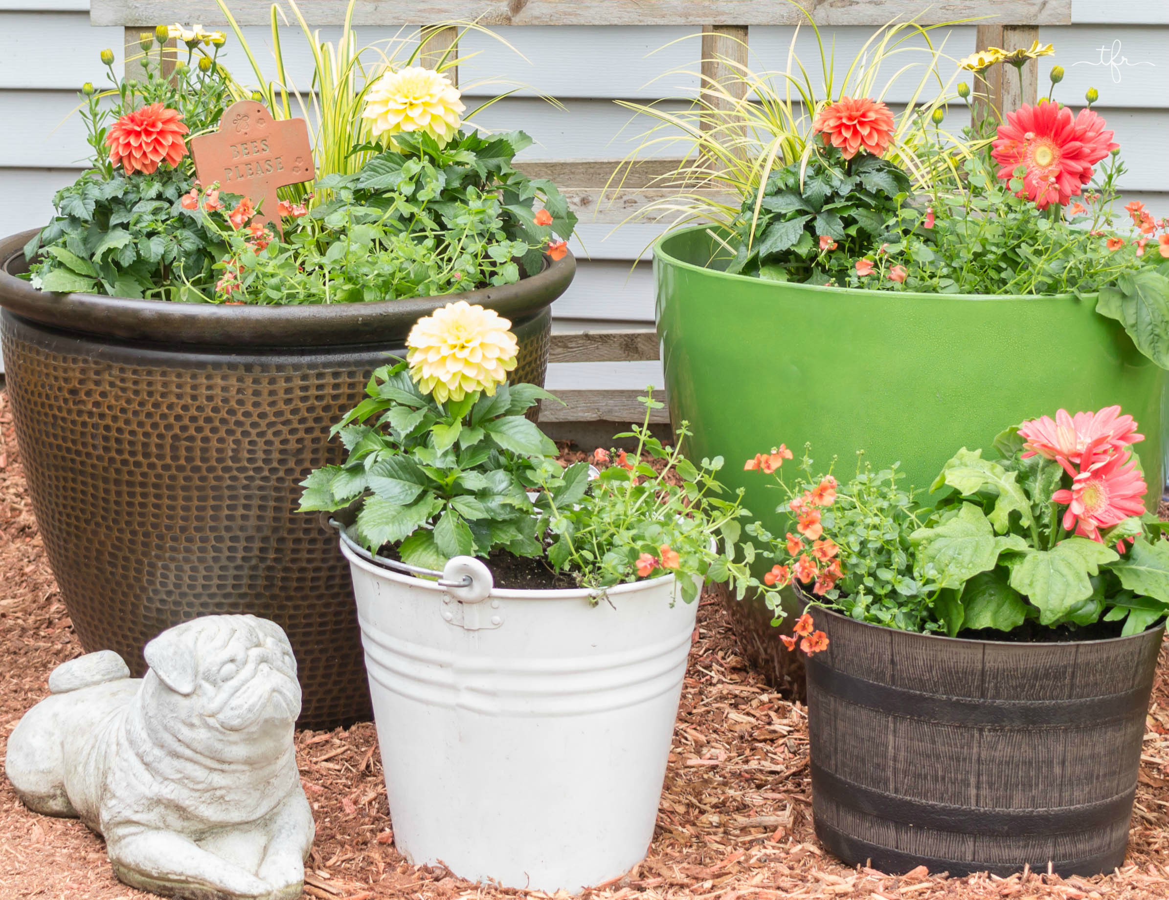I received inspiration for my container project by visiting Monrovia's Grow Beautifully blog which is filled with great how-to's and tips. Here are the most important things when creating a container garden.