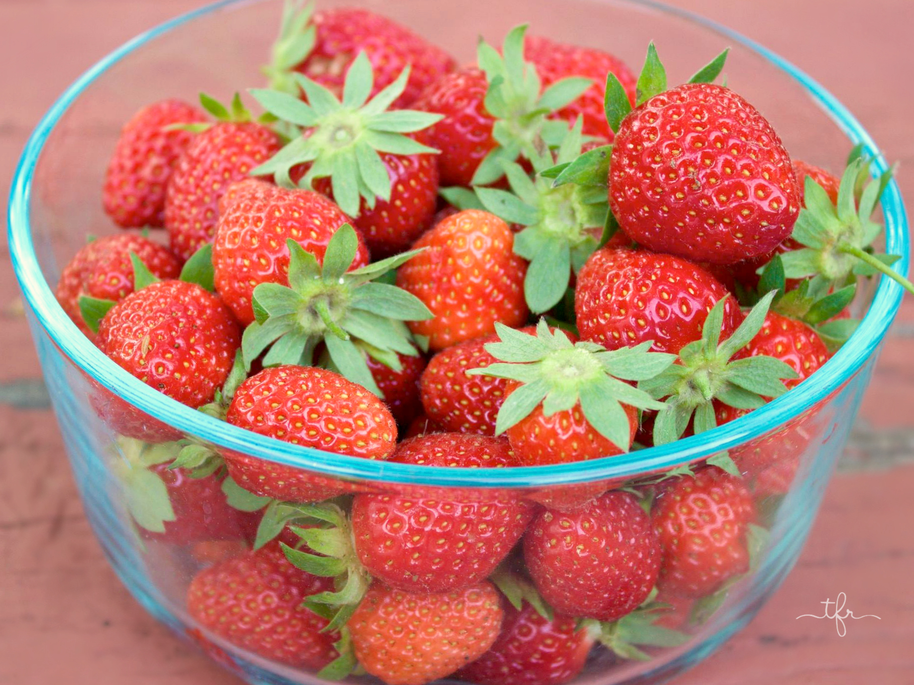 It is best to pick in the early morning hours when the berries are still cool. While you are picking, keep an eye out for damaged or bruised fruit. Make sure to discard them to encourage more healthy growth. A Simple Guide To Growing Strawberries - Angie The Freckled Rose