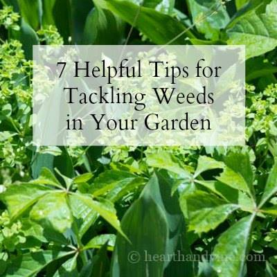 7 Helpful Tips for Tackling Weeds in Your Garden - Hearth and Vine