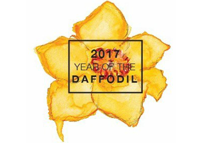 The National Garden Bureau has chosen the daffodil as the bulb of the year! Each year, they pick one annual, one perennial, one bulb and one vegetable to be celebrated and featured. The NGB takes into consideration versatility, popularity, adaptability, diversity and ease of growth. You can read more details about the Year Of The Daffodil here. In honor of this daffodil celebration, I want to show you just how easy it is to fill your yard with these fabulous flowers. I'm also providing one lucky reader with a $50 gift certificate to help you load up your landscape with bulbs, thanks to Longfield Gardens!