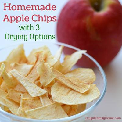Homemade Apple Chips with 3 Drying Options - Frugal Family Home