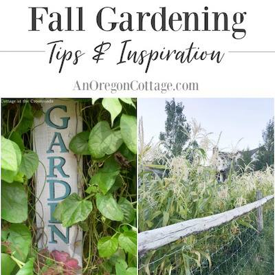 Fall Gardening Tips & Inspiration - An Oregon Cottage