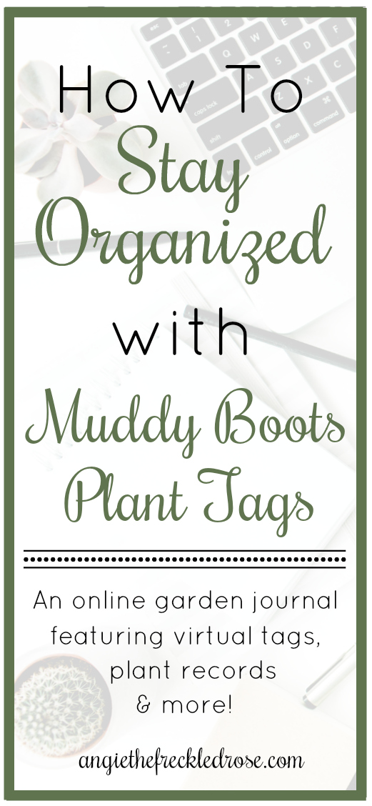 How To Stay Organized with Muddy Boots Plant Tags | angiethefreckledrose.com - Keeping your garden journals, tags, photos and notes organized can be a challenge.