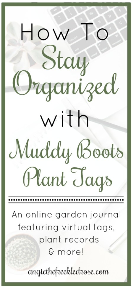 How To Stay Organized with Muddy Boots Plant Tags | angiethefreckledrose.com