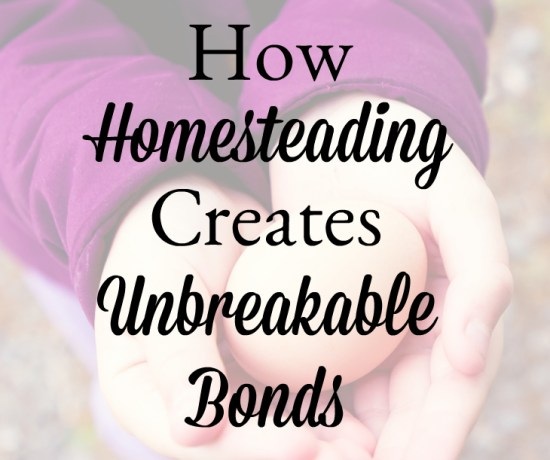 How Homesteading Creates Unbreakable Bonds | angie the freckledrose.com