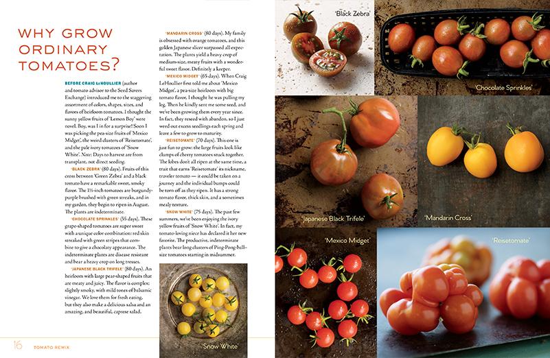 A Book Review & Giveaway: Veggie Garden Remix
