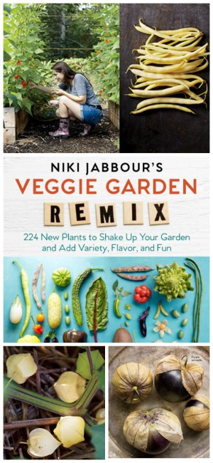 A Book Review & Giveaway: Veggie Garden Remix | angiethefreckledrose.com