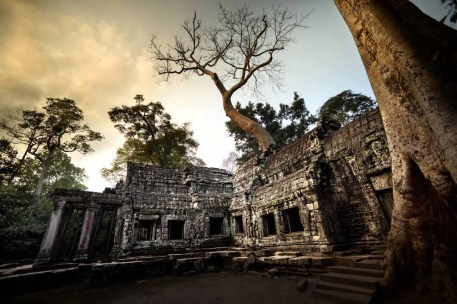ta_prohm_temple_angkor