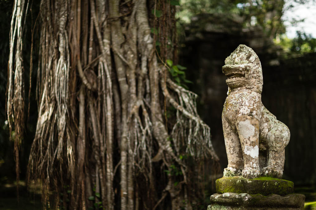 Hidden statue in Angkor