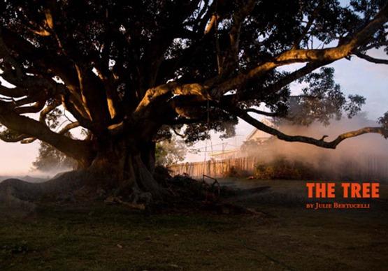 l'arbre cannes