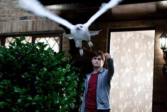 Harry Potter et les Reliques de la Mort partie 1 - 2
