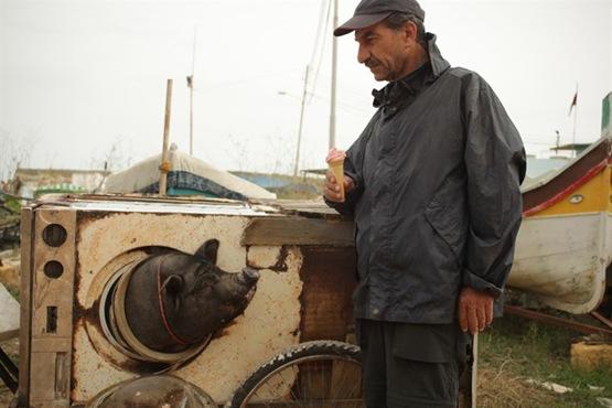 Le Cochon de Gaza - 2