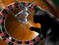 Scaramouche casino