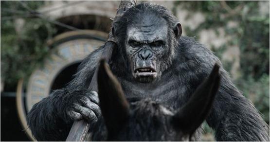 la planète des singes l'affrontement - 4