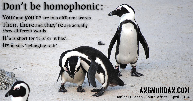 homophonic