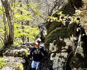Read more about the article Sui Trinceroni di Campolongo con i bambini – Tra Storia e Natura