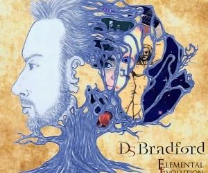 David Bradford – Elemental Evolution