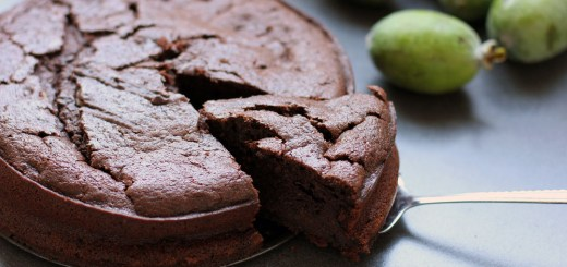 Chocolate Feijoa Cake 1