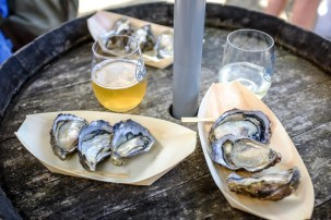 te-matuku-oyster-festival-11
