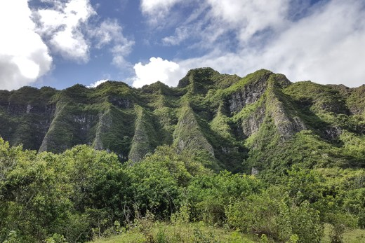 Kualoa Ranch and Zipline (Kaneohe, Hawaii) 1