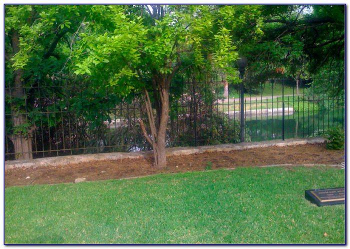 Craigslist Houston Lawn And Garden Garden Home Design