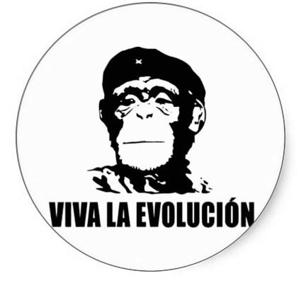 mono evolucion