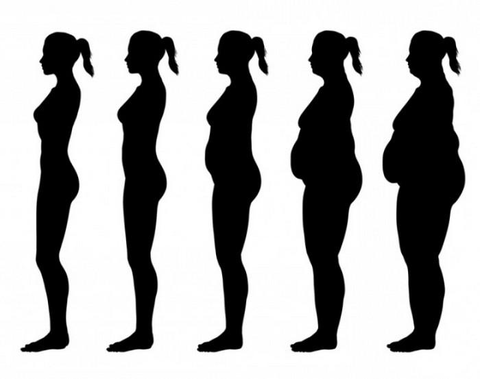 10, шокирующих, фактов, о продуктах, факт, факты, еда, питание