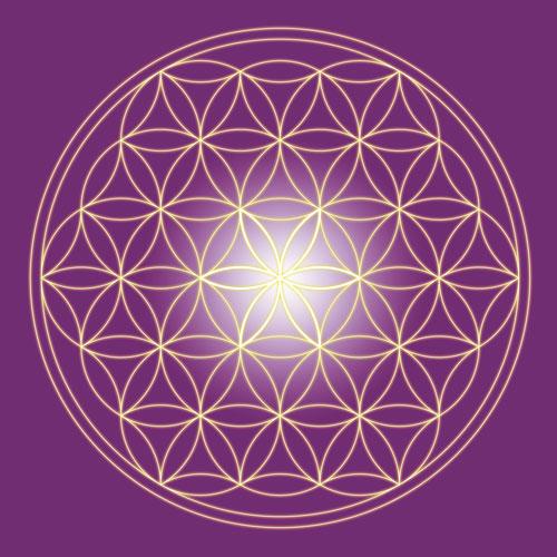 Blume des Lebens, violett, gelb, weiss Harmonisierung vom Mensch und Raum, Wandbild, Feng Shui Bild, Wanddeko, Leinwandbild, Farbwirkung