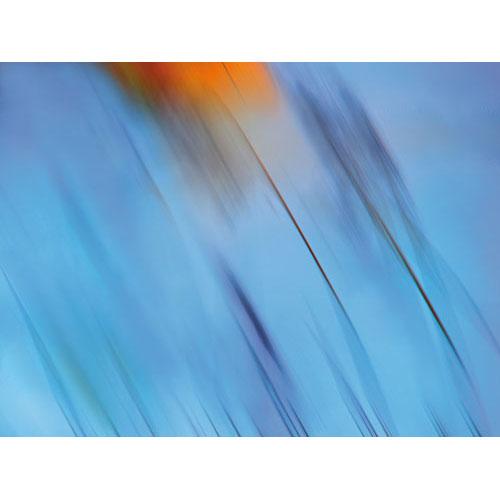 Wandbild blue angel, Lebendigkeit und Klarheit, blau, hellblau, himmelblau Harmonisierung vom Mensch und Raum, wandbilder, wanddeko, leinwandbilder, umzug, feng shui bilder, energiebilder, abstraktes wandbild blau, bild abstrakt