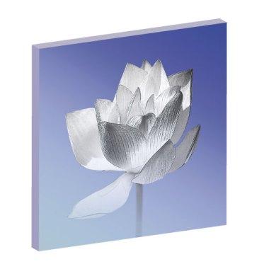 Wandbild Lotusblume, Leinwandbilder, Lotus, Lotusblume Energiebild, Harmonisierung von Raum und Mensch, feng shui bild, Wanddeko, Wandbild blau, floral, Blumenbild, Blumen