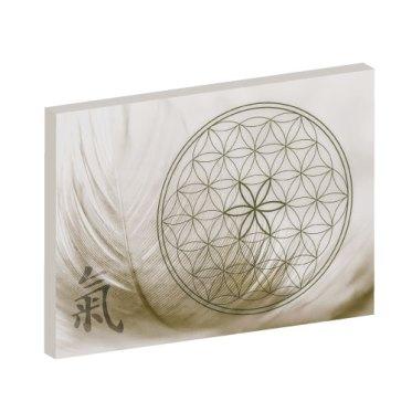 Wandbild Qi, Wandbilder, Lebensblume, Blume des Lebens, Feng Shui Bilder, Wandbilder Therapieräume
