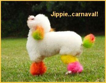 Carnaval plaatjes