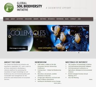 Global Soil Biodiversity Initiative