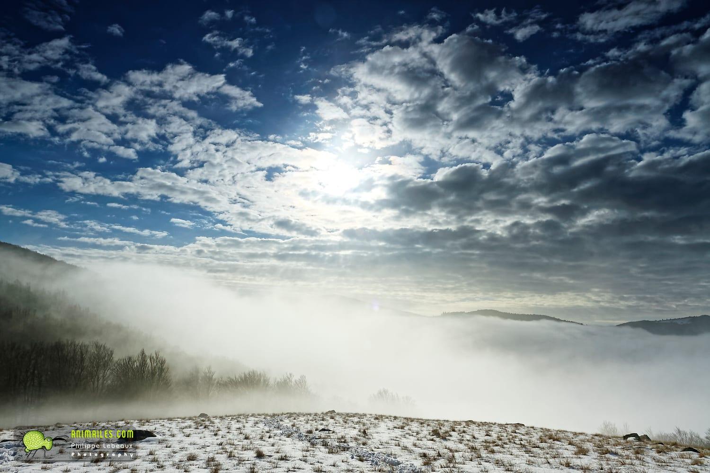 Lingas, Paysage et brume en hiver