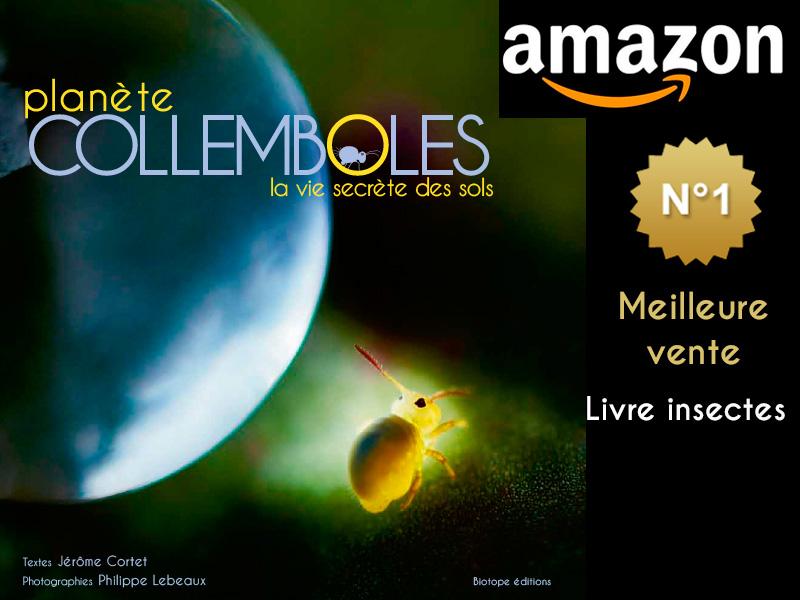 Amazon Planète Collemboles N°1 Meilleure vente, livre : Insectes