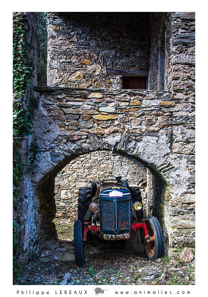 Vieux tracteur sous une arche en pierres