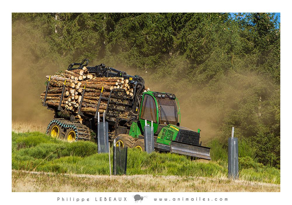 Engin transportant du bois