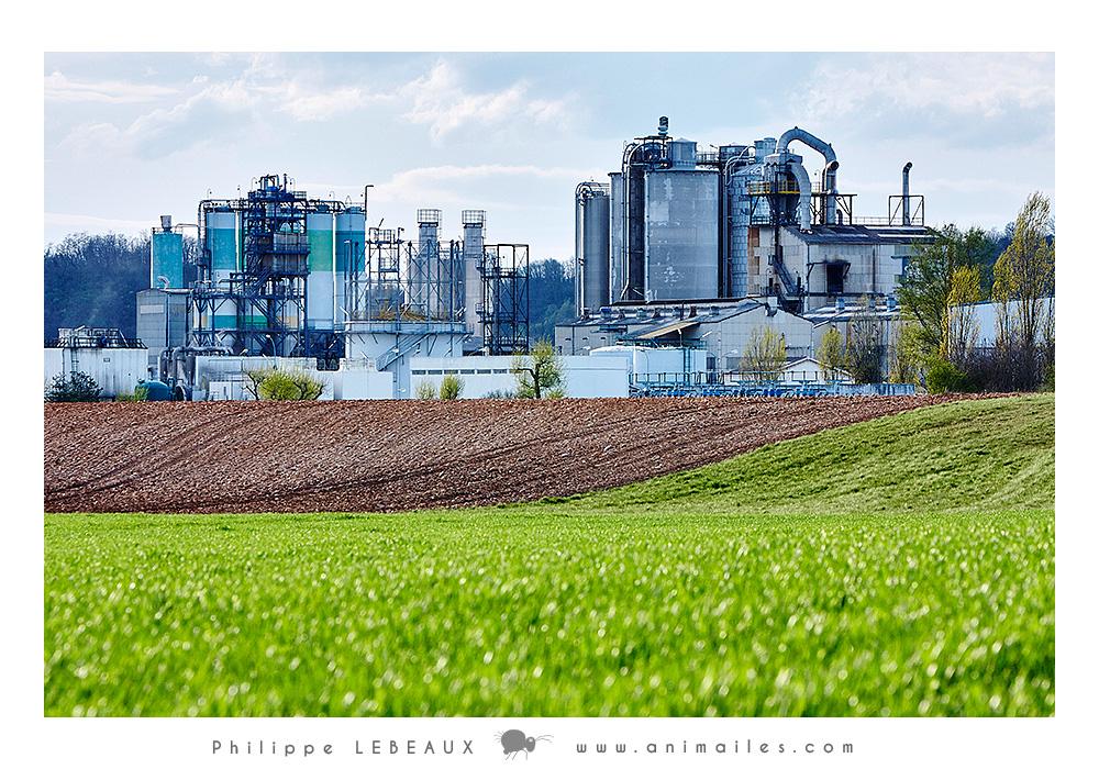 Champs agricole et usine