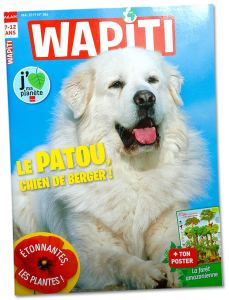 WAPITI 2 doubles pages photos sur le Patou, Chien de Berger