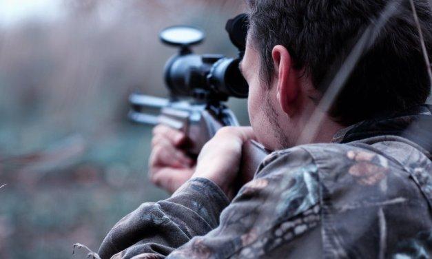 MAXI URGENT avant le 6 novembre : consultation publique relative au transfert de missions vers les chasseurs