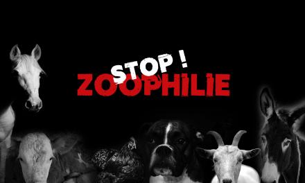 Diffamation, menaces et menaces de mort pendant 8 mois envers l'association de protection animale Animal Cross. 3 personnes de la communauté zoophile interpellées
