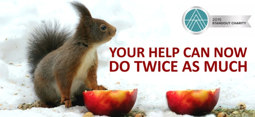You can now help Animal Ethics twice as much.