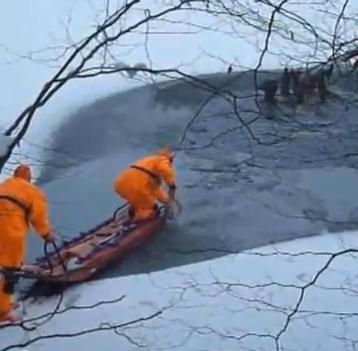 氷が割れて湖に落ちてしまった鹿の群れの救助